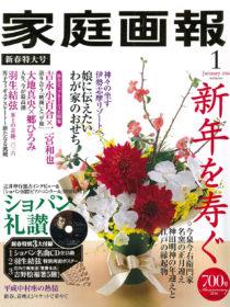 雑誌「家庭画報」2016年1月号に 御宿TheEarth・汀渚ばさら邸・ホテルネム が掲載されました。